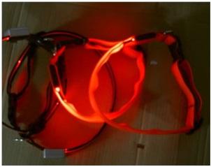 Coleira Fluorescente com luz Tamanho S (44 cm)